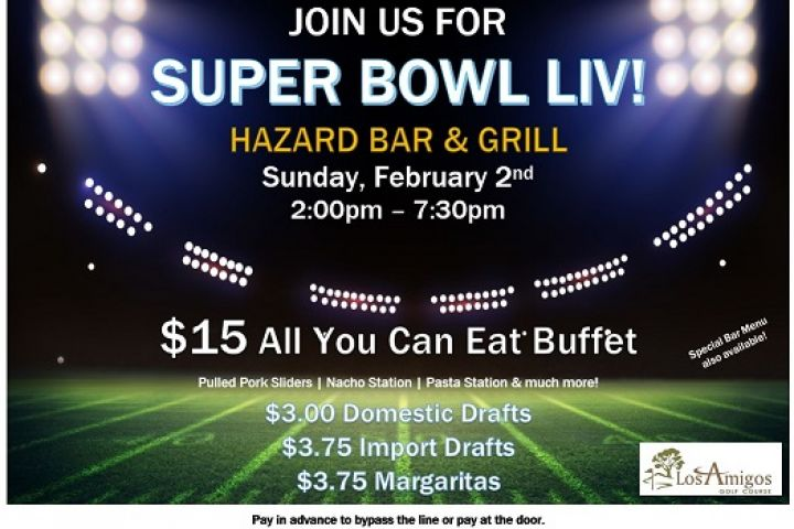 Super Bowl Party 2020!
